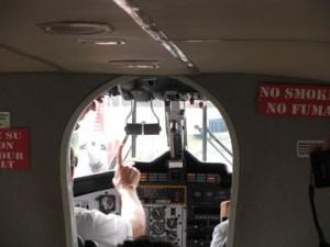 Nature Air Pilots