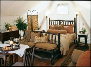 Glamping Hotel Room