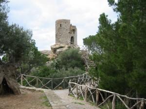 Mallorca Resorts