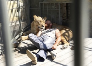 Zookeeper to sleep in lions' cage