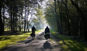 Cycling through the Netherlands