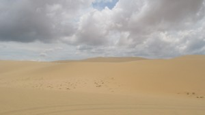 Red and White Dunes